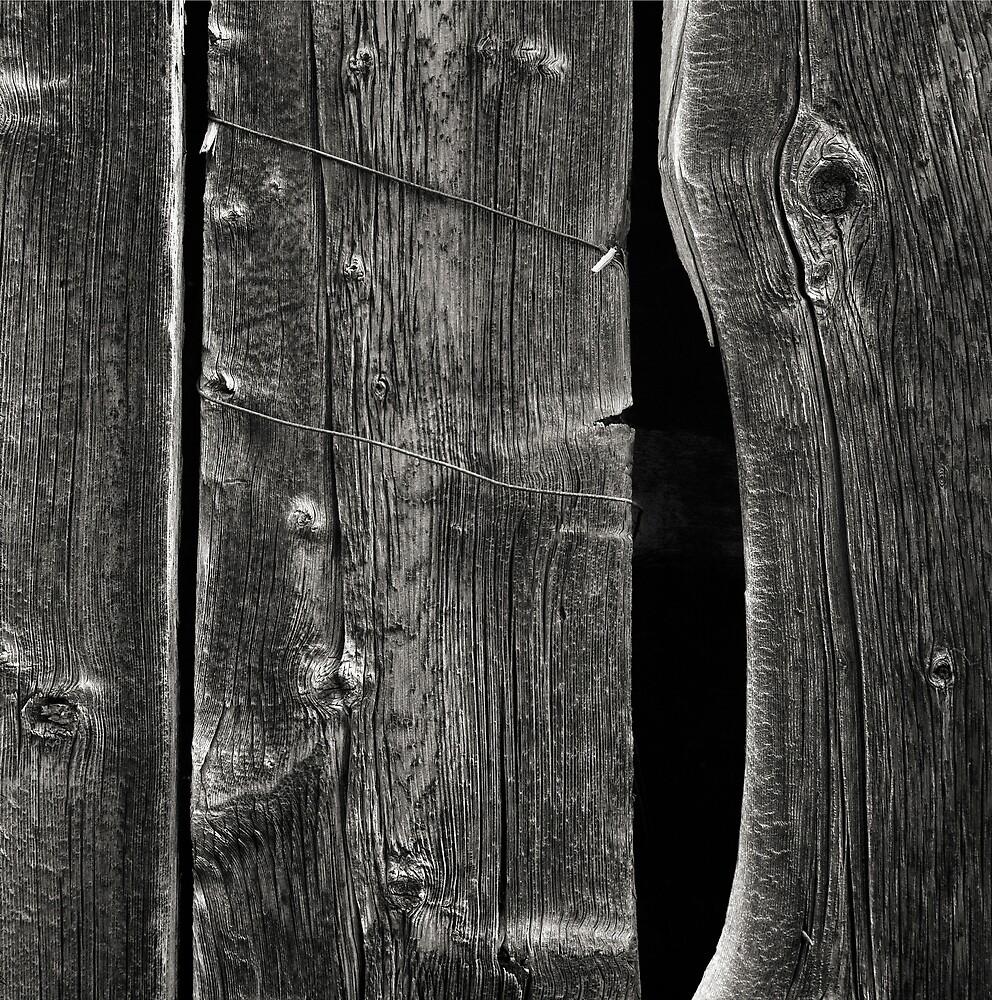 Barn Wood by mymamiya