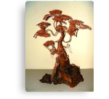 Copper Bonsai Canvas Print