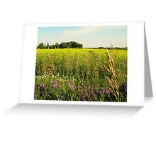 A Field on a Summers Day... Not a snow flake to be seen!!!! Greeting Card