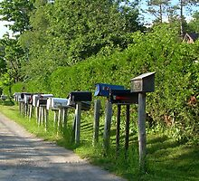 Counrty Mail...save a tree, no junk mail please... by Larry Llewellyn