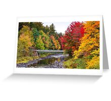 Nature! Sale!!! Greeting Card