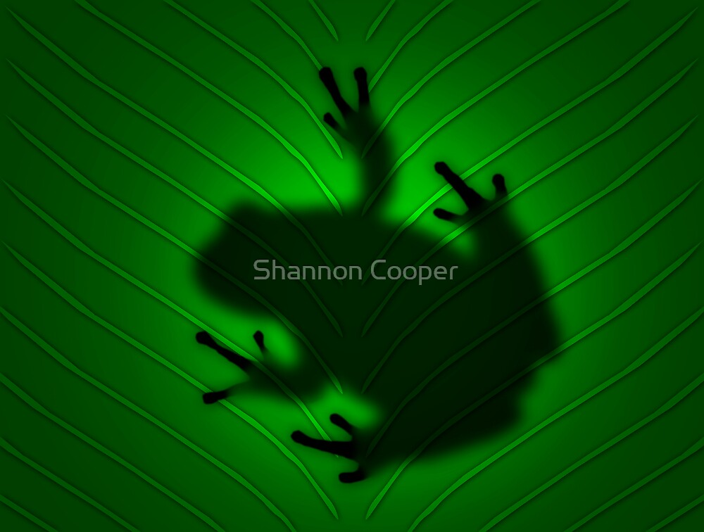 The Other Side by Shannon Beauford