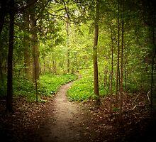 Mystic Path by Freedom