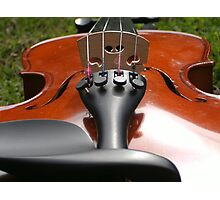 Violin! Photographic Print