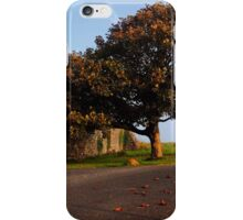 The Fabulous Fall  iPhone Case/Skin