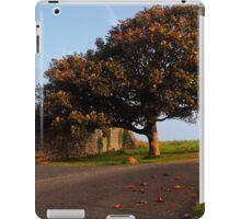 The Fabulous Fall  iPad Case/Skin
