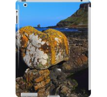 Rock And Roll iPad Case/Skin