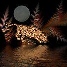 Midnight Rambler by Angi Baker