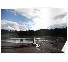 Sour Lake Poster