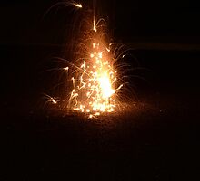 flammable by LeVanS3Photo