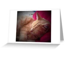 Baby at rest Greeting Card
