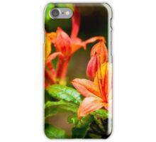 Deciduous Azalea iPhone Case/Skin