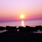 A calm sunset at Lake Erie  by Rachel Counts