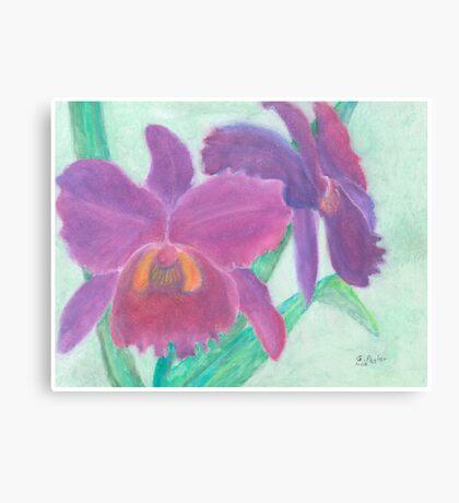 Beautiful Purple Orchid - Oil Pastel  Canvas Print