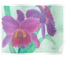 Beautiful Purple Orchid - Oil Pastel  Poster