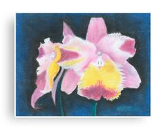 Beautiful Yellow and Pink Orchid - Oil Pastels Canvas Print