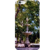 West park, Allentown Pa. iPhone Case/Skin