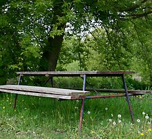 Grandma's Picnic Table (LLD4) by Kate Purdy