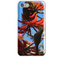 in the flame tree flowers iPhone Case/Skin