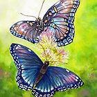 Butterfly Dance by Sherry Cummings