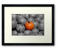 Perfect Pumpkin Framed Print
