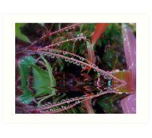 """Wet & Drippy"".. Art Print"