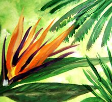 BIRD OF PARADISE - HAND PAINTED CARD  by librapat