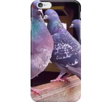 Pigeons painting iPhone Case/Skin