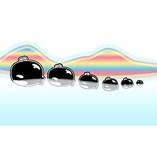 Rainbow Orcas Photographic Print