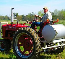 International Farmall Tractor 1946 model by connie campbell