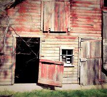 Doors Open by BarnArtandMore