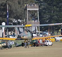 Tiger Moth Air Race, Luskintyre Airfield, Australia 2014 by muz2142