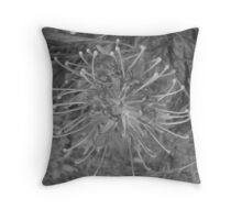 B&W-Grevillea Throw Pillow