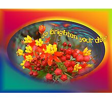 To brighten your day Photographic Print