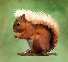 Red Squirrel by Bamalam Art and Photography