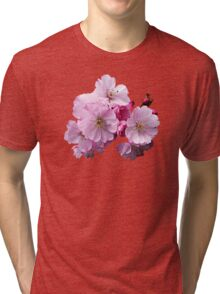 Closeup of Cherry Blossoms Tri-blend T-Shirt