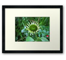 punk spike Framed Print