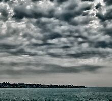 Newport Blues by ArtisticLee