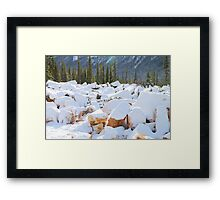 Among the Rocks: Autumn Snow in The Rockies Framed Print