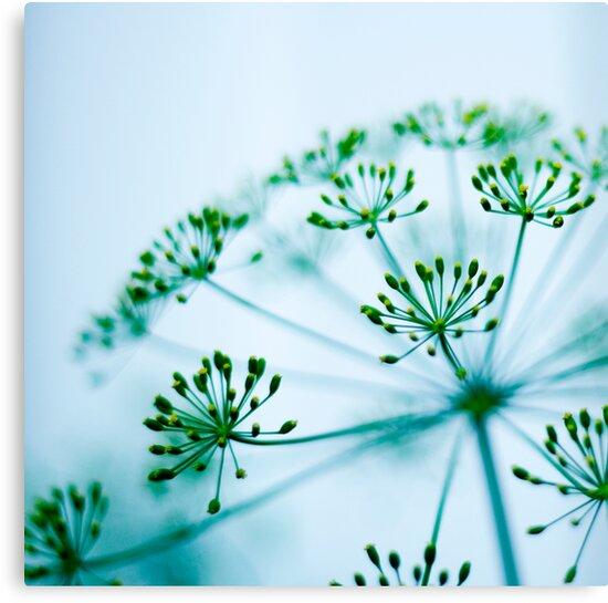 Gentle Whisper by sandra arduini