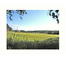 Green Farm Field Art Print