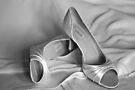 Brides's Wedding Shoes by Matt Sillence