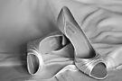 Brides's Wedding Shoes by Matt Sillence