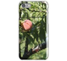 peach, one of the harvest   iPhone Case/Skin