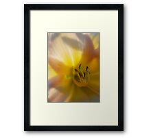 Sweet Dreams... Framed Print
