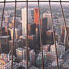 CN TOWER # 10...LOOKING THROUGH THE MESH by gypsykatz