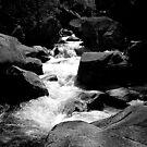 Deep River by CXCBEAR