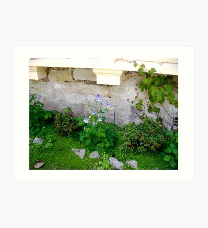 Unpretentious garden... Art Print