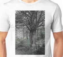 Cedar Trees in Northern Arkansas Unisex T-Shirt