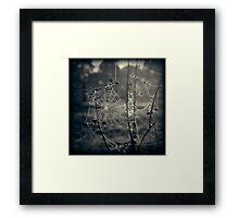 Beneath the Apple Trees Framed Print